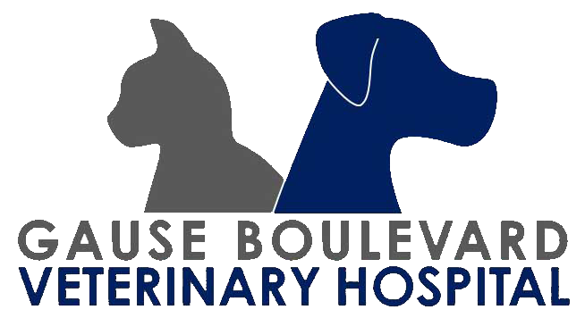 Gause Boulevard Veterinary Hospital